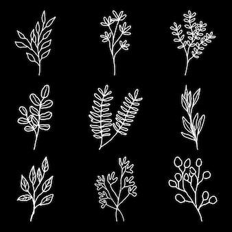 Colección floral