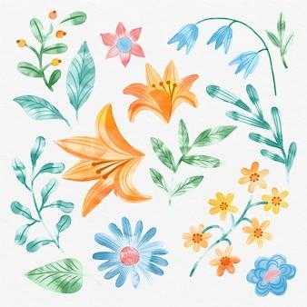 Colección de flores de acuarela pintadas a mano