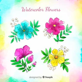 Colección de flores en acuarela