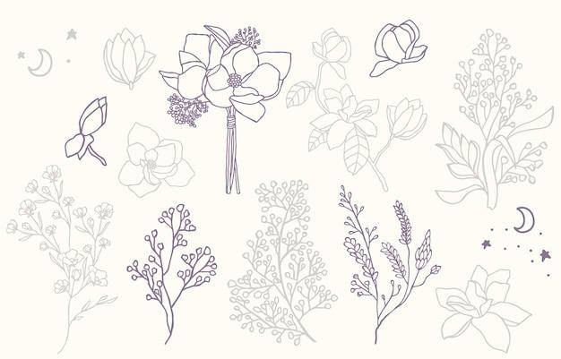 Colección de flores de belleza con lavanda, magnolia.
