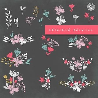 Colección de flores bosquejadas