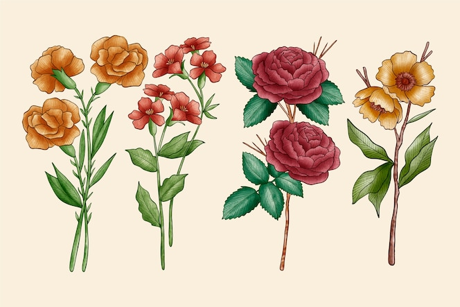 Colección de flores de botánica vintage