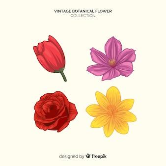 Colección de flores botánicas vintage