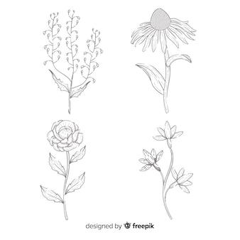 Colección de flores concepto dibujado a mano