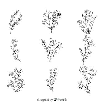 Colección de flores dibujadas a mano realista