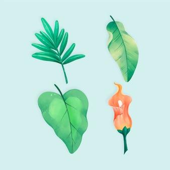 Colección de flores y hojas tropicales dibujadas a mano