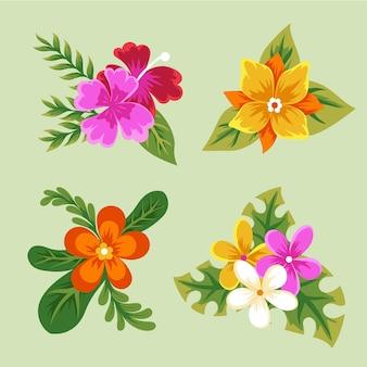 Colección de flores y hojas tropicales