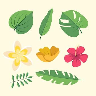 Colección de flores y hojas.