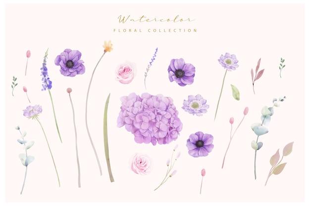 Colección de flores de hortensias y anémona
