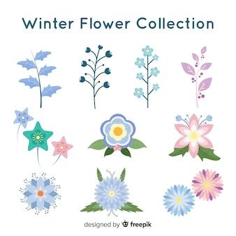 Colección flores invierno bonitas
