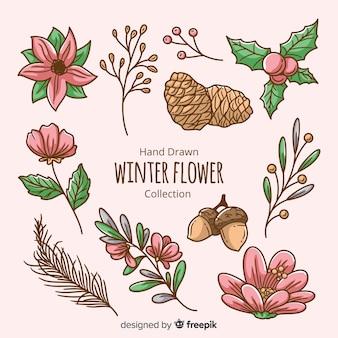 Colección flores invierno dibujadas a mano