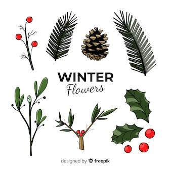 Colección de flores de invierno dibujadas a mano