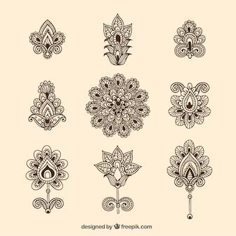 Colección de flores ornamentales