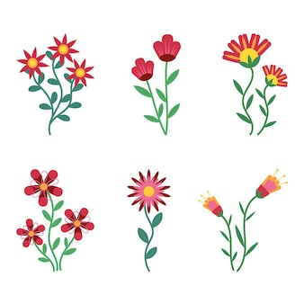 Colección de flores planas orgánicas