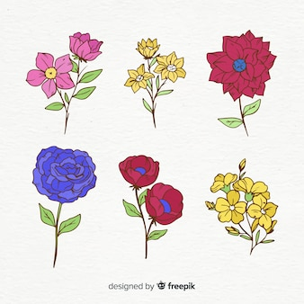 Colección de flores de primavera dibujadas a mano