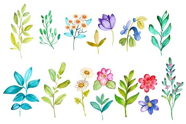 Colección de flores de primavera