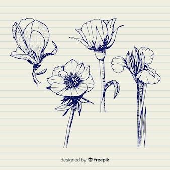 Colección de flores con tallos dibujados a mano