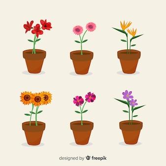 Colección de flores