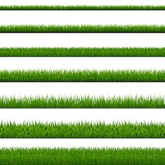 Colección frontera hierba sobre fondo blanco
