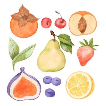 Colección de frutas en acuarela pintada a mano.