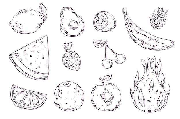 Colección de frutas dibujadas a mano grabado