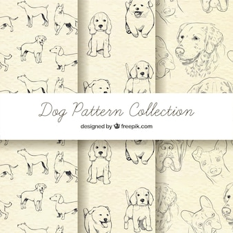 Colección de garabatos de patrones de perros