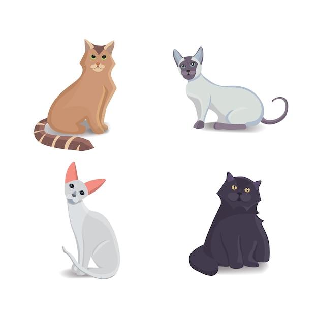 Colección de gatos de diferentes razas gato aislado sobre fondo blanco.