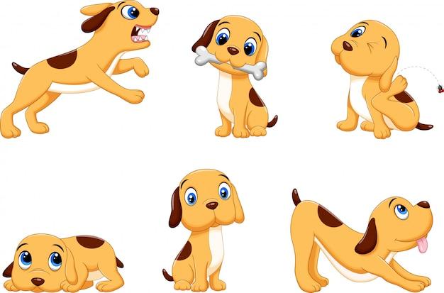 Colección de gracioso perro marrón en diferentes situaciones establecido