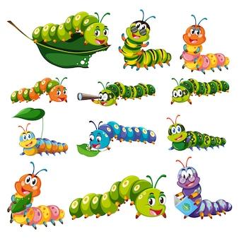 Colección de gusanos a color