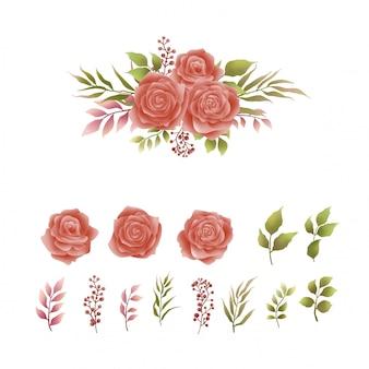 Colección de hermosas rosas acuarelas