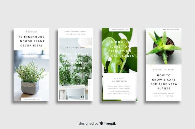 Colección de historias de instagram de comida natural