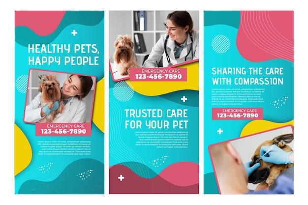 Colección de historias de instagram veterinarias