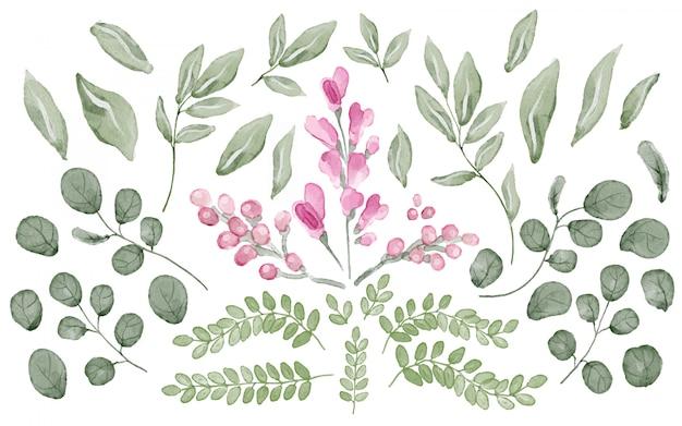 Colección de hojas y flores en acuarela.