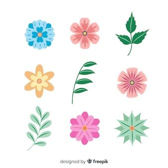 Colección hojas y flores