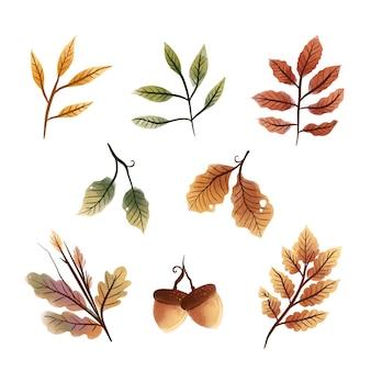 Colección de hojas de otoño acuarela