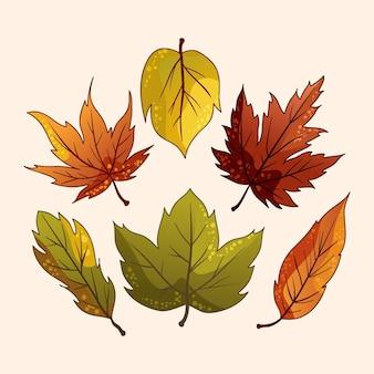 Colección hojas de otoño dibujadas a mano