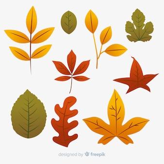 Colección de hojas de otoño de diseño plano.