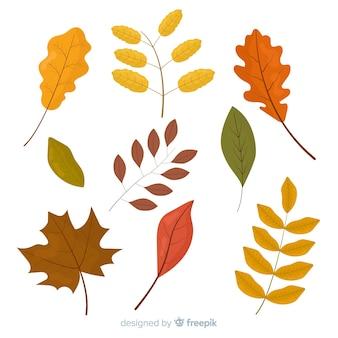 Colección de hojas de otoño en diseño plano