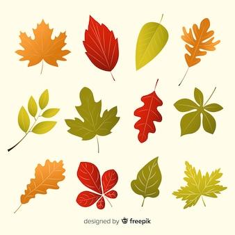 Colección de hojas de otoño de diseño plano