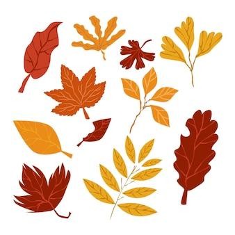 Colección de hojas de otoño de estilo dibujado a mano