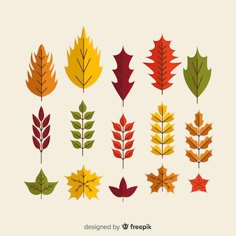 Colección de hojas de otoño estilo plano.