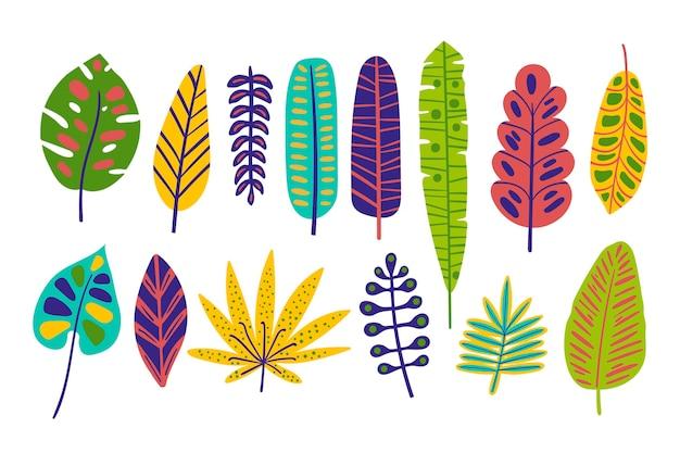 Colección de hojas tropicales coloridas dibujadas a mano
