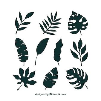 Colección de hojas tropicales con estilo de silueta