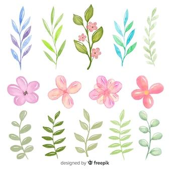 Colección de hojas verdes sombreadas y rosas rosadas