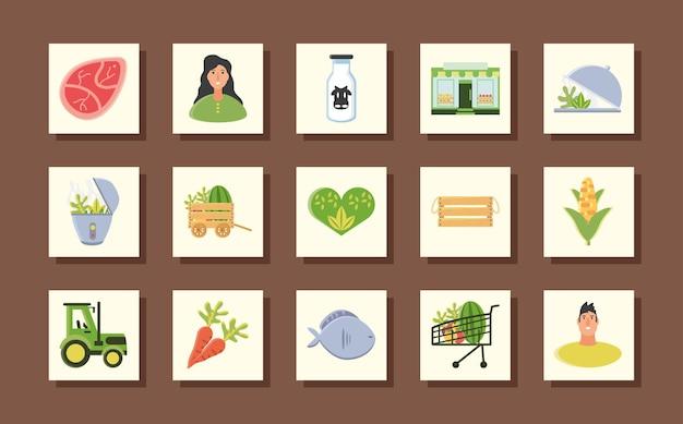 Colección de iconos de alimentos orgánicos carne de vacuno tractor granja agricultura naturaleza frutas y verduras ilustración vectorial