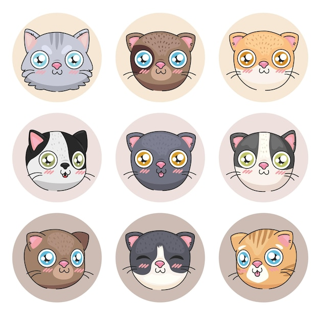 Colección de iconos de dibujos animados de gatos