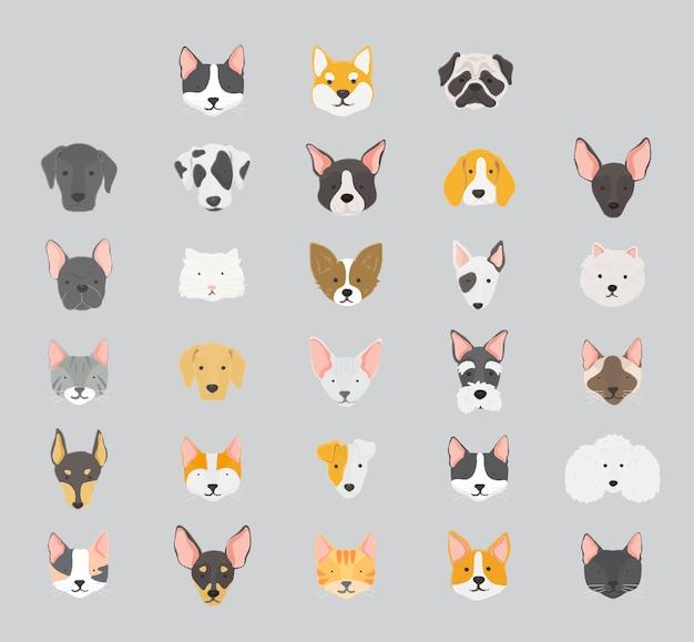 Colección de iconos de gatos y perros