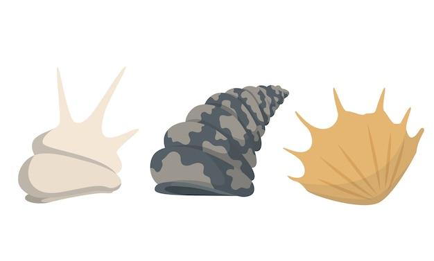 Colección de iconos submarinos coloridos conchas de mar tropical.