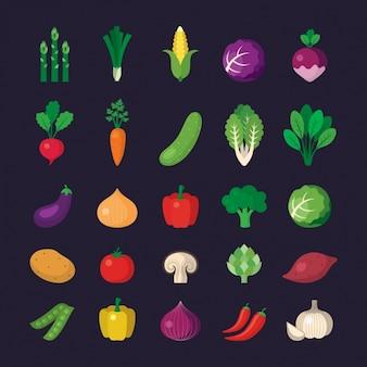 Colección de iconos de verduras vector gratuito
