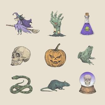 Colección de ilustraciones de halloween de estilo retro dibujado a mano bruja en escoba zombie brazo cráneo bola mágica y bosquejo de reptiles